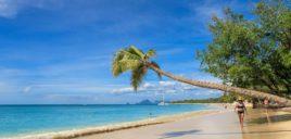 Caribbean Martinique Island Beach Holiday Sea